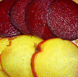 bulls blood and golden beetrot