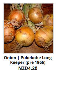 Recommended_Perennials_Onion_Pukekohe_Long_Keeper