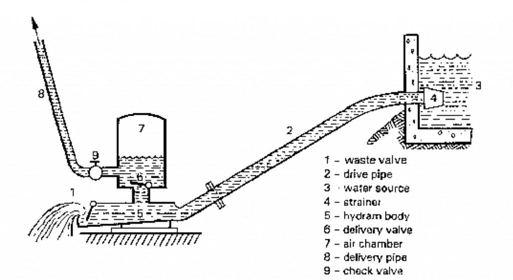EmGv66