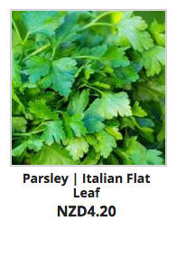 Recommended_Seeds_Parsley_Flat_Leaf