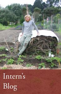 Interns_blog2