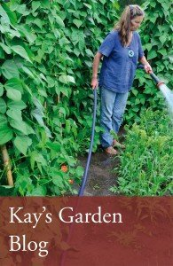 Kays_garden2