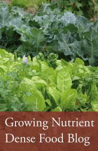nutrient_dense