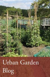 urban_garden2